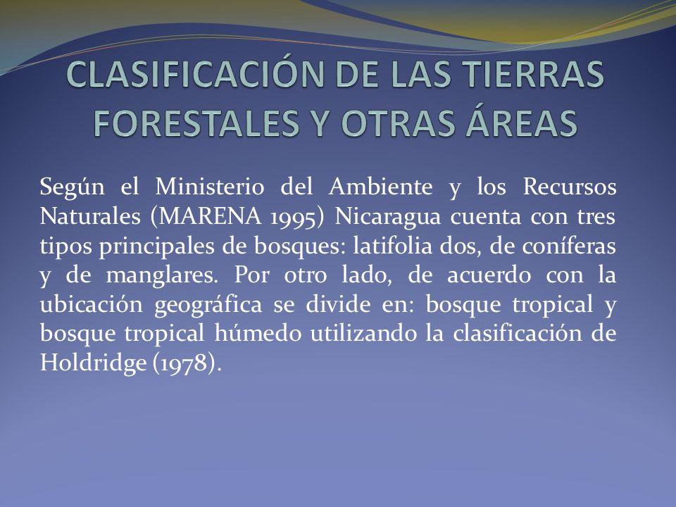 CLASIFICACIÓN DE LAS TIERRAS FORESTALES Y OTRAS ÁREAS
