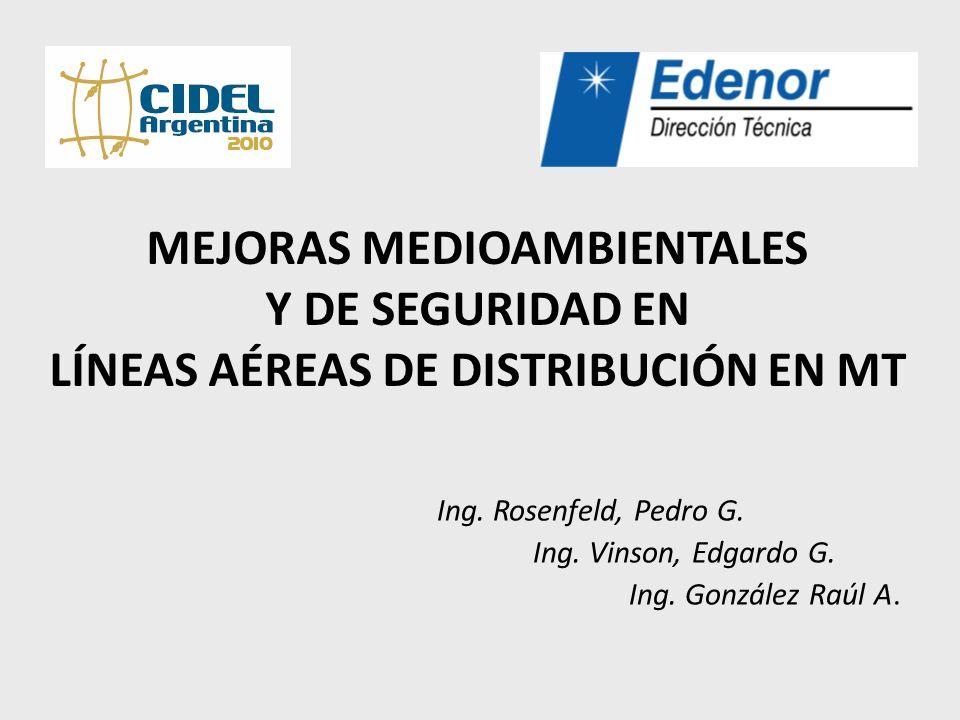 Ing. Rosenfeld, Pedro G. Ing. Vinson, Edgardo G. Ing. González Raúl A.