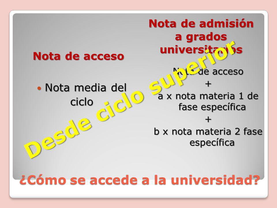 ¿Cómo se accede a la universidad