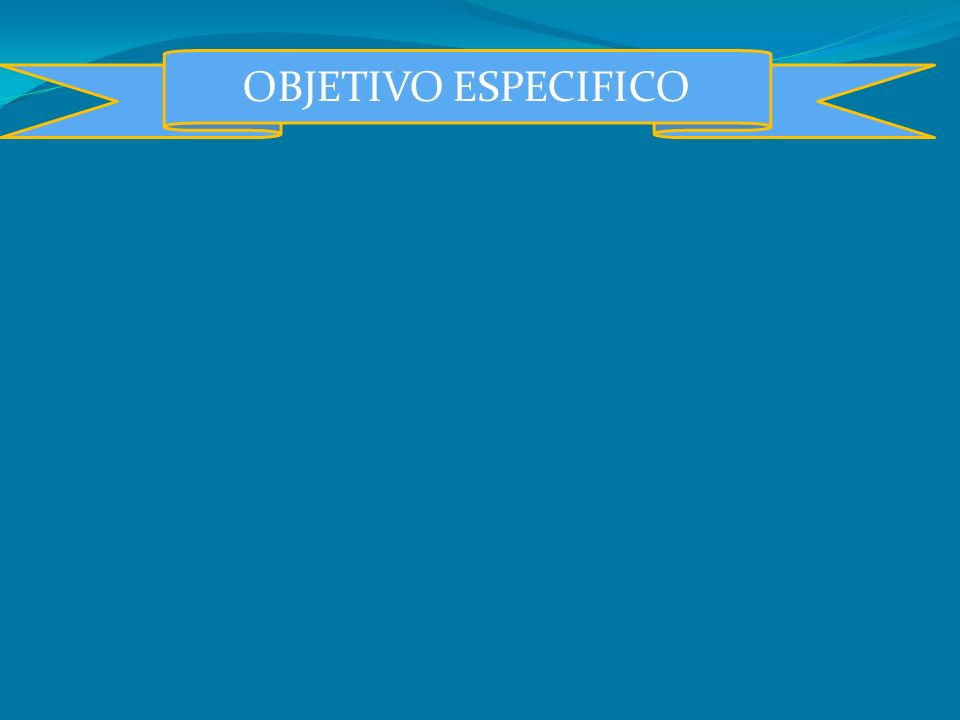 OBJETIVO ESPECIFICO