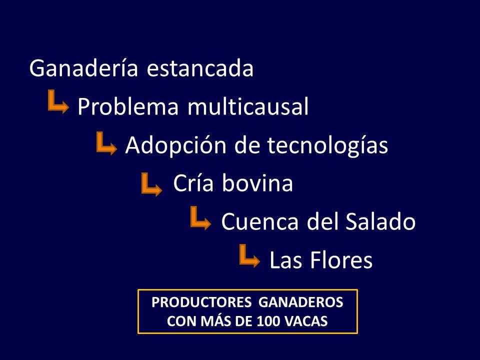 PRODUCTORES GANADEROS CON MÁS DE 100 VACAS
