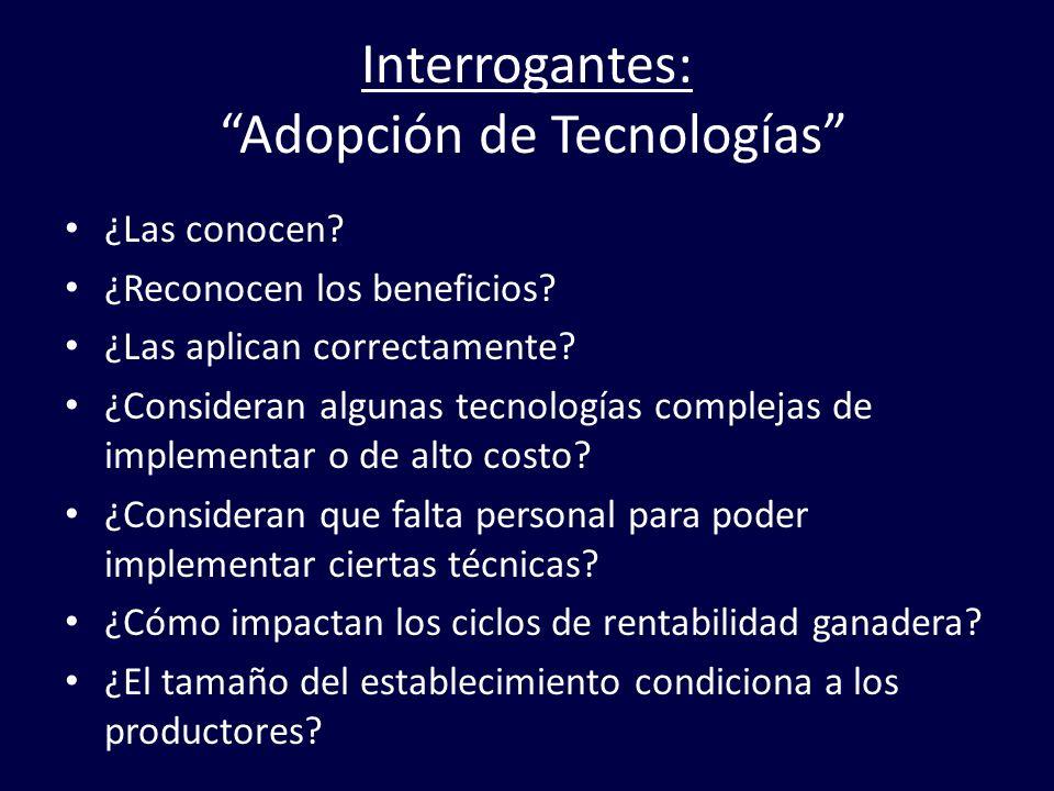 Interrogantes: Adopción de Tecnologías