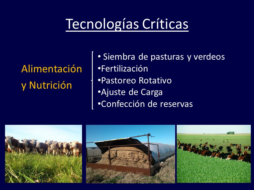 Tecnologías Críticas Alimentación y Nutrición