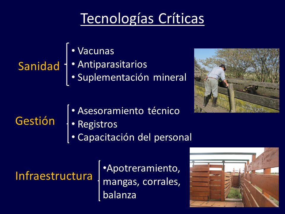 Tecnologías Críticas Sanidad Gestión Infraestructura Vacunas