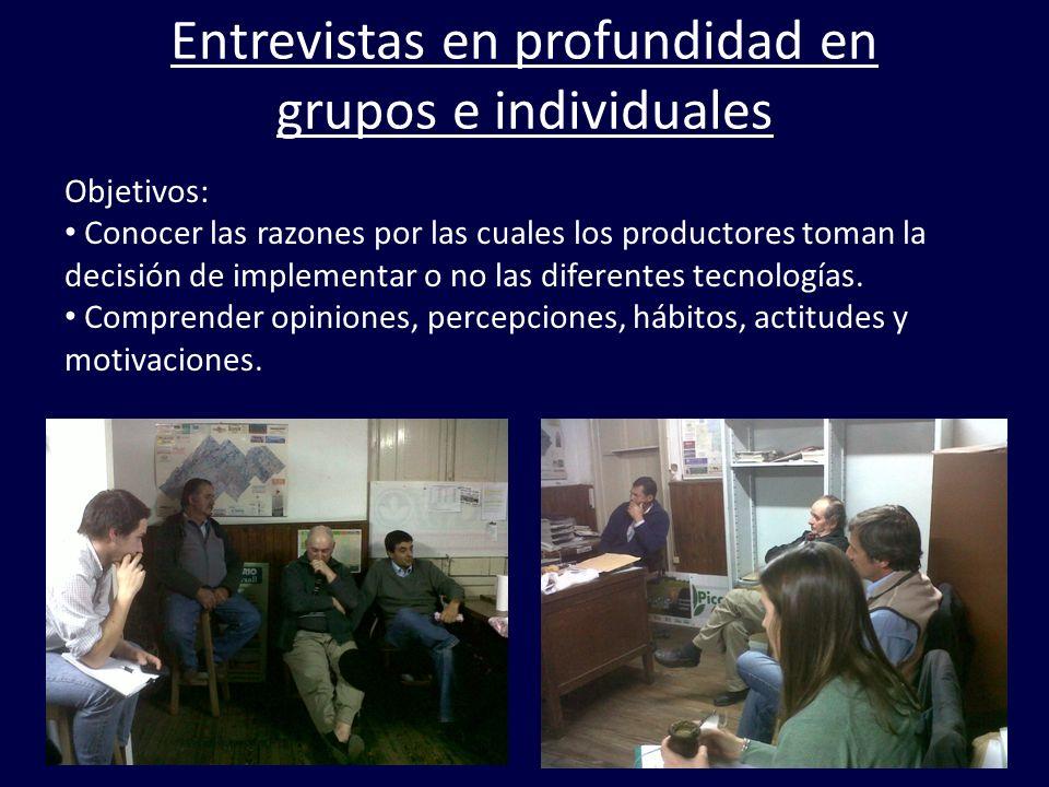Entrevistas en profundidad en grupos e individuales