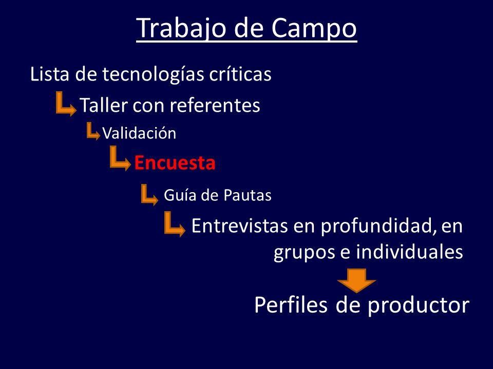 Trabajo de Campo Perfiles de productor Lista de tecnologías críticas