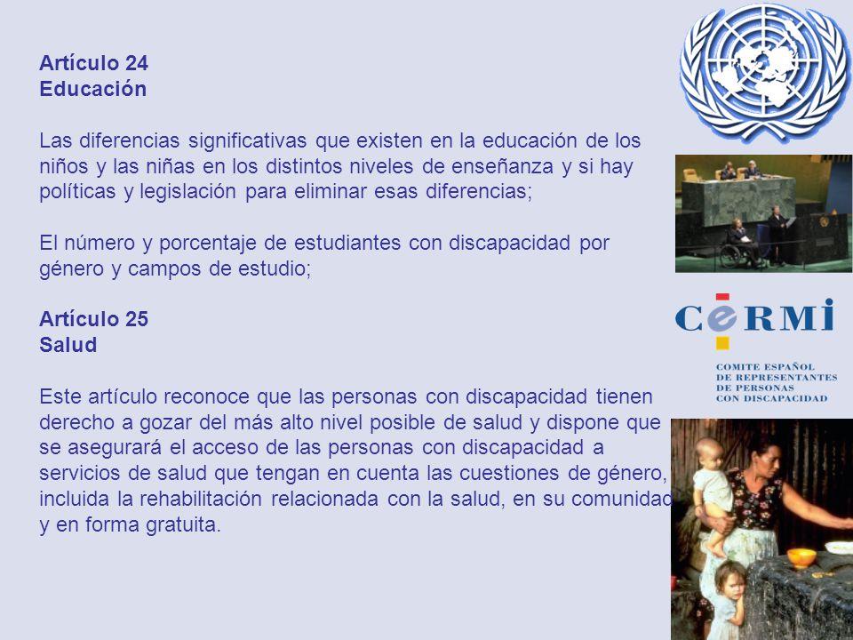 Artículo 24 Educación