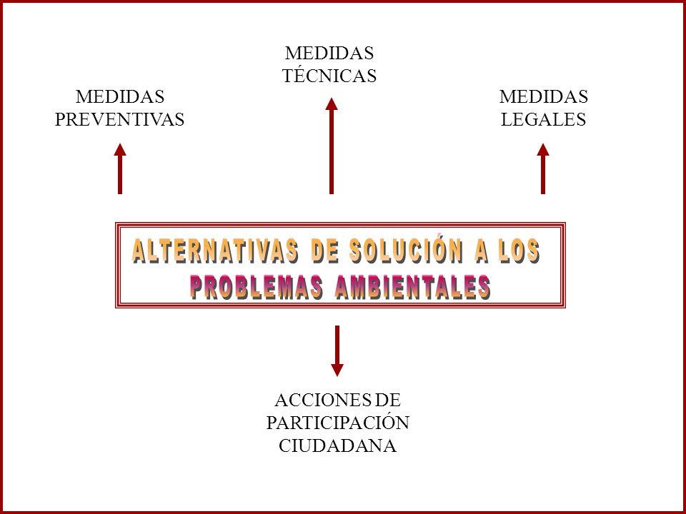 ALTERNATIVAS DE SOLUCIÓN A LOS PROBLEMAS AMBIENTALES