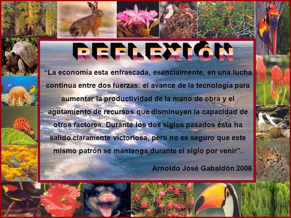 REFLEXIÓN CHARLES DARWIN