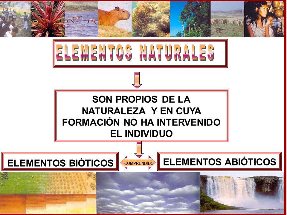 ELEMENTOS NATURALES COMPRENDIDO. SON PROPIOS DE LA NATURALEZA Y EN CUYA FORMACIÓN NO HA INTERVENIDO EL INDIVIDUO.