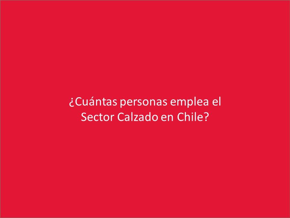 ¿Cuántas personas emplea el Sector Calzado en Chile