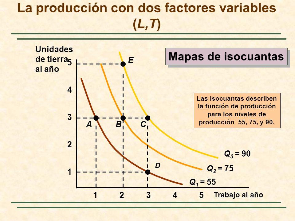 La producción con dos factores variables (L,T)