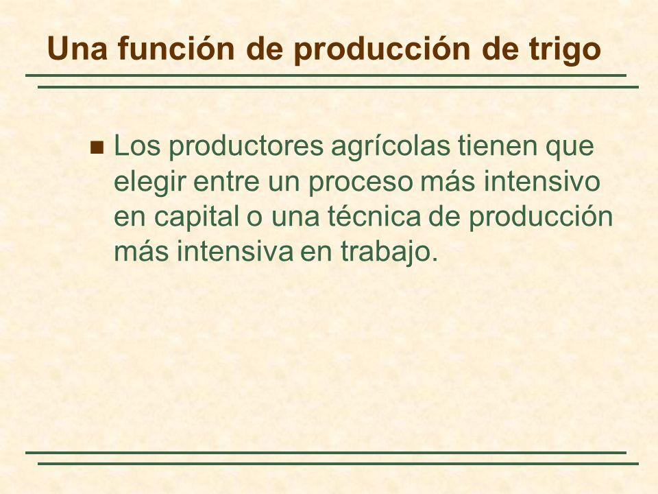 Una función de producción de trigo