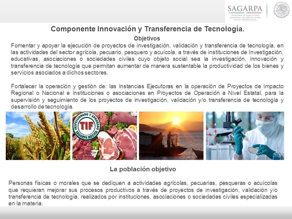 Componente Innovación y Transferencia de Tecnología.