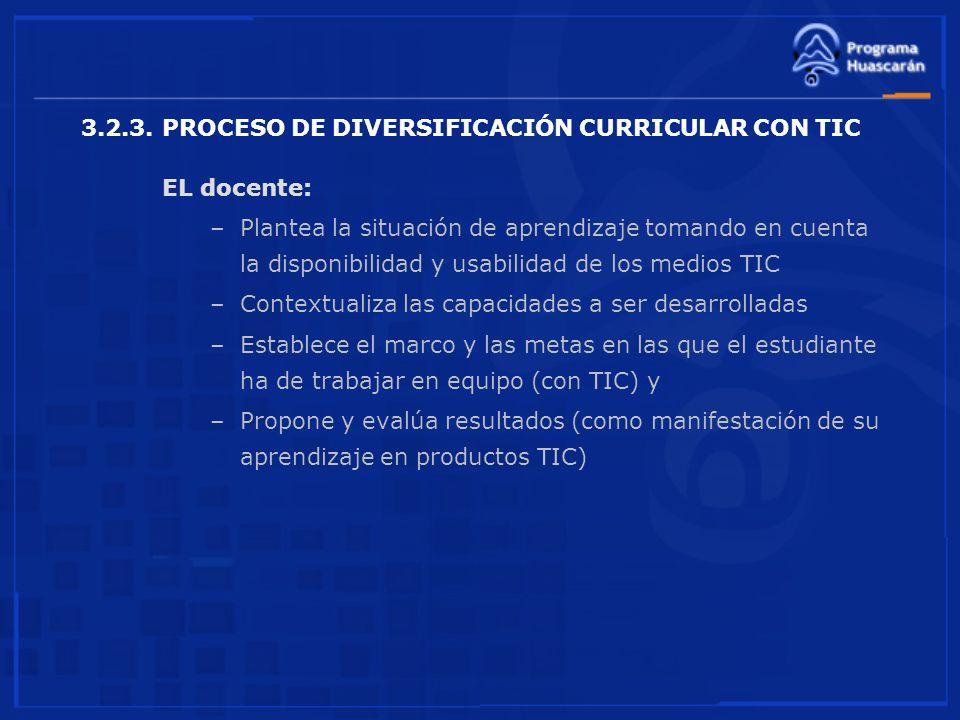 3.2.3. PROCESO DE DIVERSIFICACIÓN CURRICULAR CON TIC