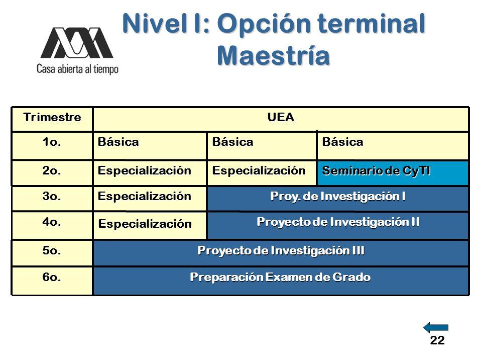 Nivel I: Opción terminal Maestría