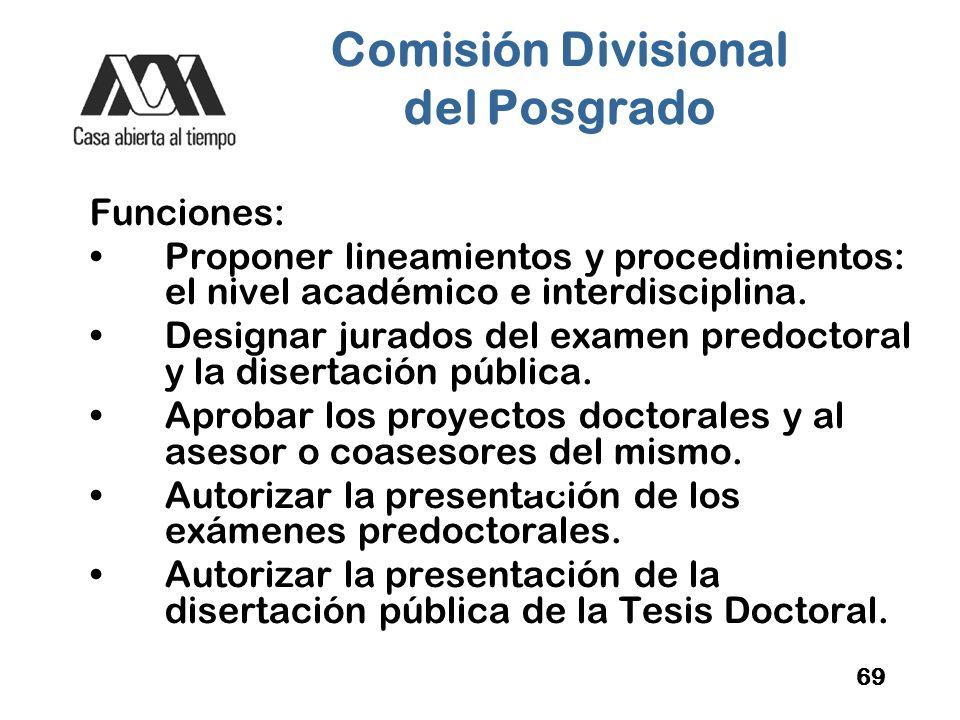 Comisión Divisional del Posgrado