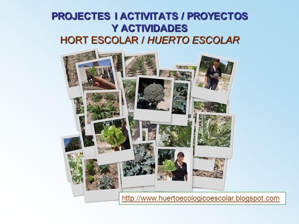 PROJECTES I ACTIVITATS / PROYECTOS Y ACTIVIDADES HORT ESCOLAR / HUERTO ESCOLAR