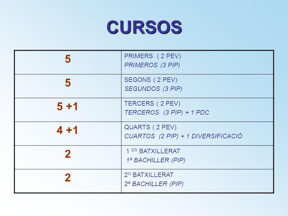 CURSOS 5 5 +1 4 +1 2 PRIMERS ( 2 PEV) PRIMEROS (3 PIP) SEGONS ( 2 PEV)