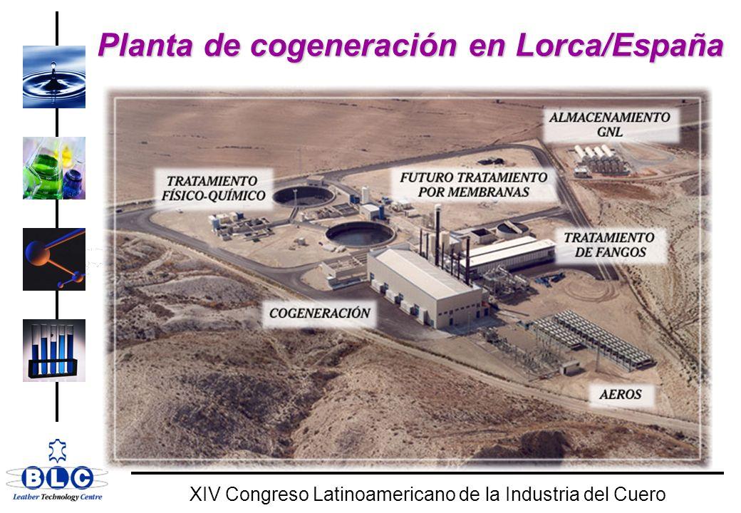 Planta de cogeneración en Lorca/España