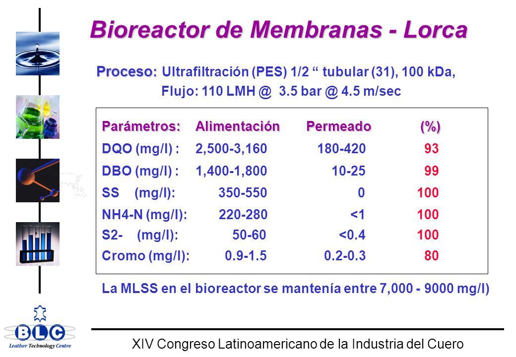 Bioreactor de Membranas - Lorca