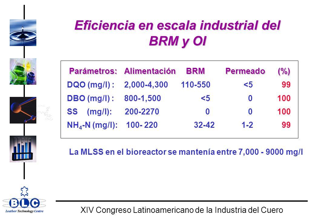 Eficiencia en escala industrial del BRM y OI