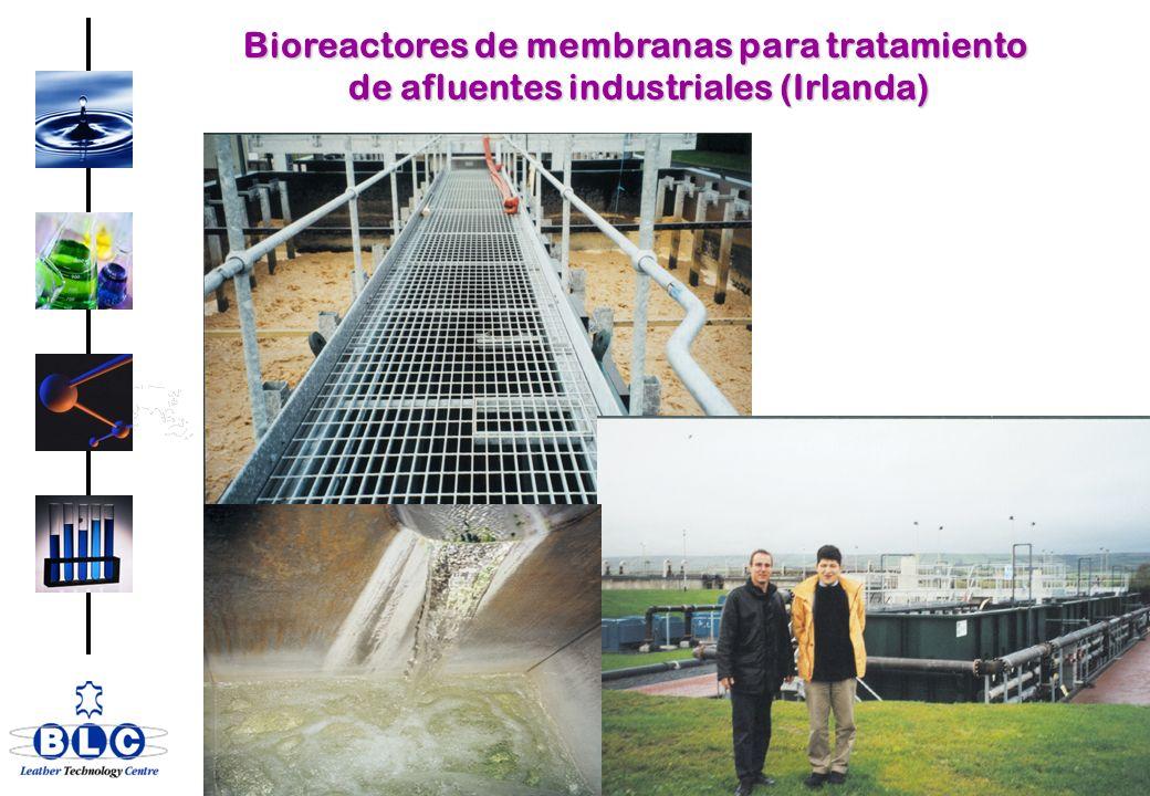 Bioreactores de membranas para tratamiento