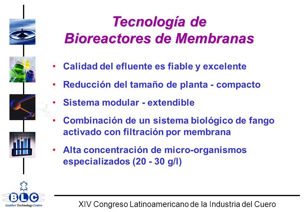 Tecnología de Bioreactores de Membranas
