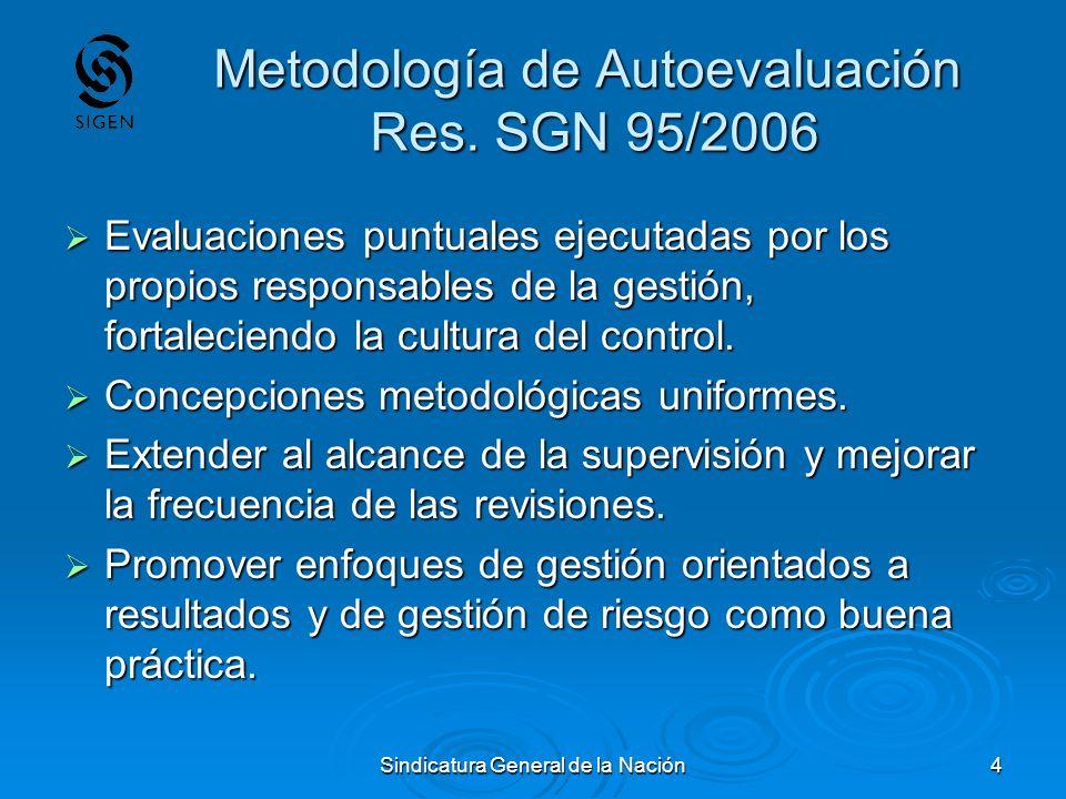 Metodología de Autoevaluación Res. SGN 95/2006
