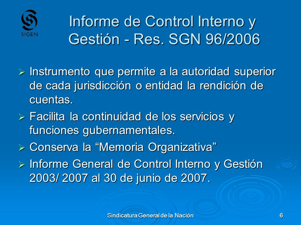 Informe de Control Interno y Gestión - Res. SGN 96/2006