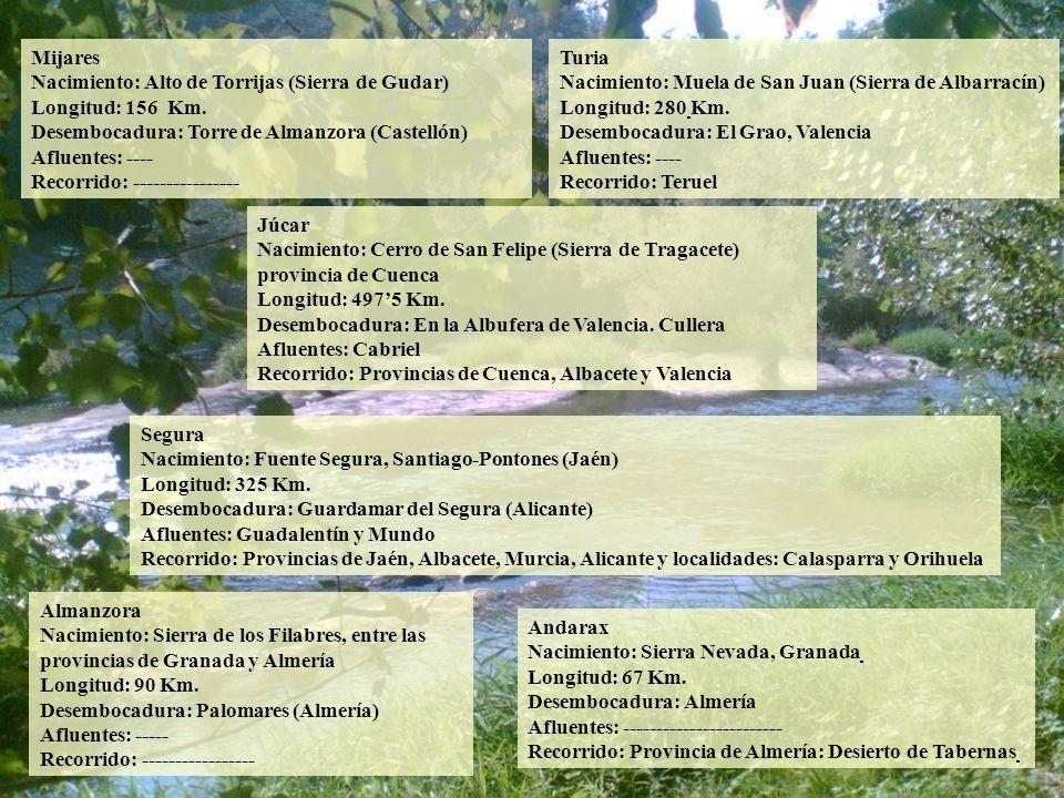 Mijares Nacimiento: Alto de Torrijas (Sierra de Gudar) Longitud: 156 Km. Desembocadura: Torre de Almanzora (Castellón) Afluentes: ----