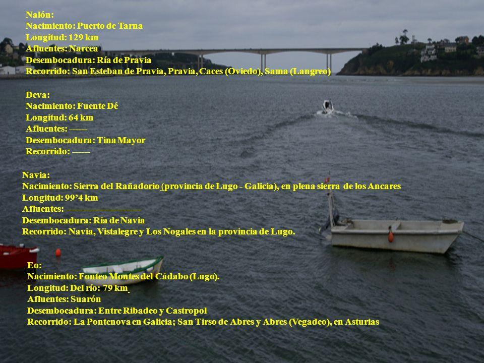 Nalón:Nacimiento: Puerto de Tarna. Longitud: 129 km. Afluentes: Narcea. Desembocadura: Ría de Pravia.