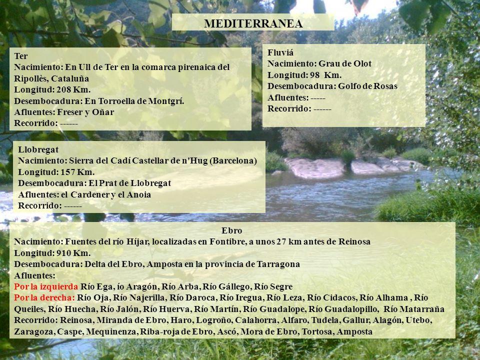 MEDITERRANEA Fluviá Ter Nacimiento: Grau de Olot