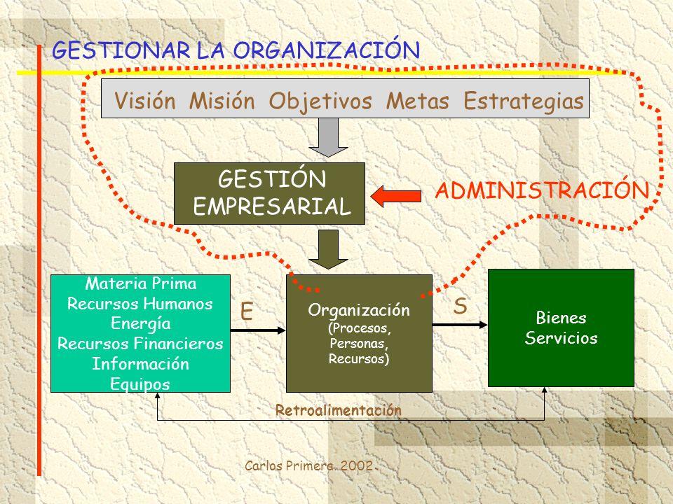 GESTIONAR LA ORGANIZACIÓN