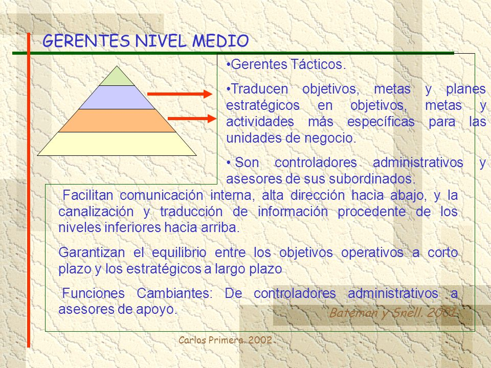 GERENTES NIVEL MEDIO Gerentes Tácticos.