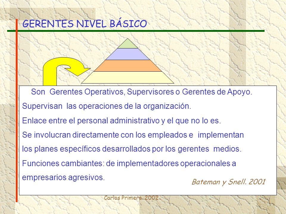 GERENTES NIVEL BÁSICO Son Gerentes Operativos, Supervisores o Gerentes de Apoyo. Supervisan las operaciones de la organización.
