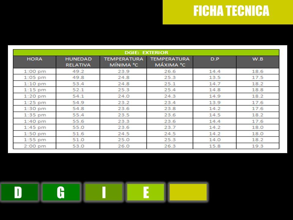 FICHA TECNICA D G I E