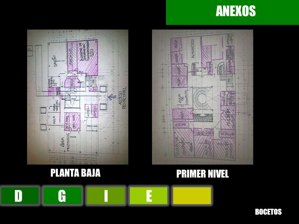 ANEXOS PLANTA BAJA PRIMER NIVEL D G I E BOCETOS