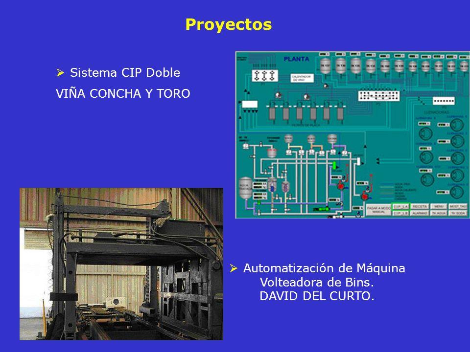 Automatización de Máquina Volteadora de Bins. DAVID DEL CURTO.