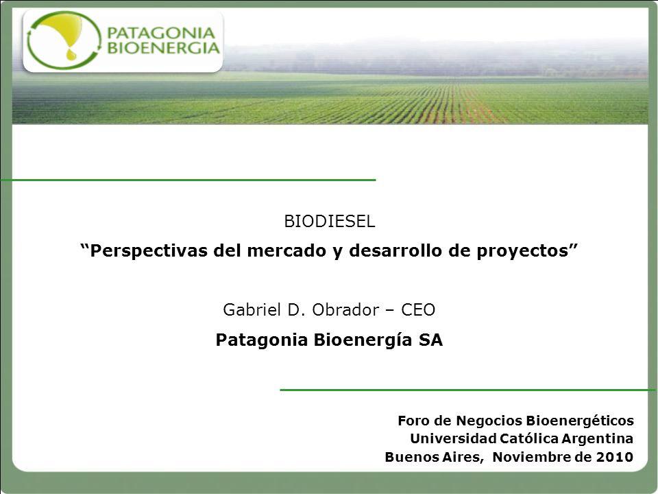 BIODIESEL Perspectivas del mercado y desarrollo de proyectos Gabriel D. Obrador – CEO Patagonia Bioenergía SA
