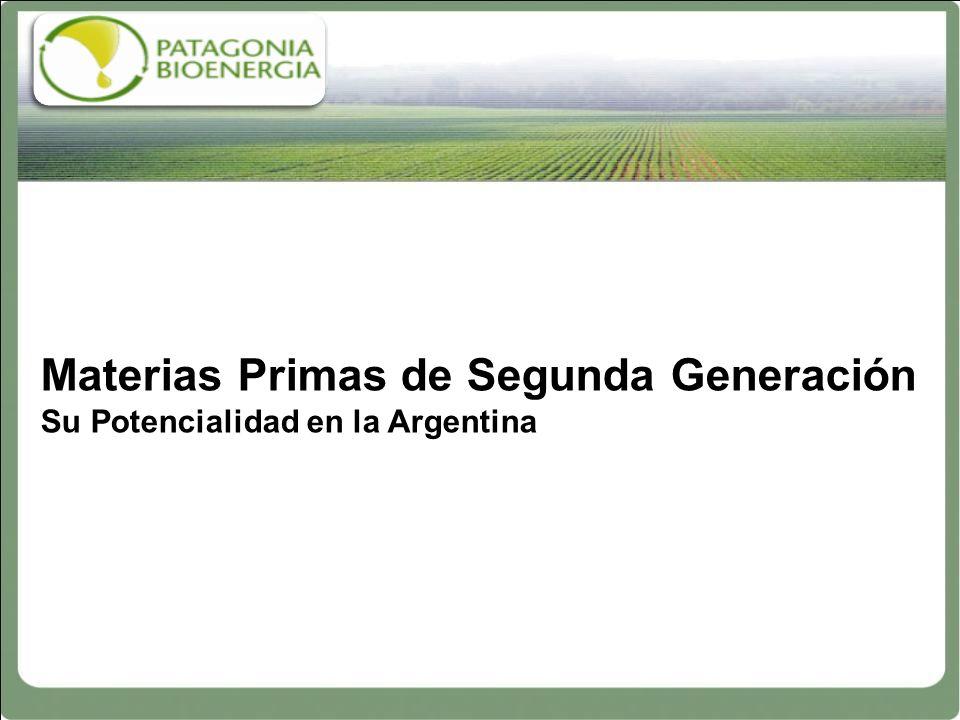 Materias Primas de Segunda Generación Su Potencialidad en la Argentina