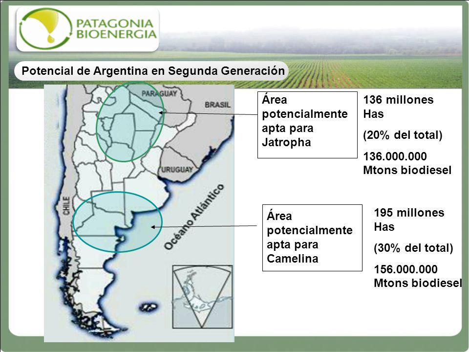Potencial de Argentina en Segunda Generación