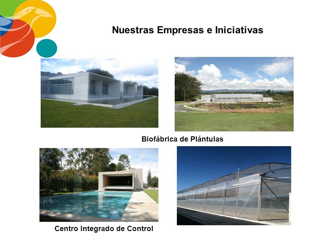 Nuestras Empresas e Iniciativas