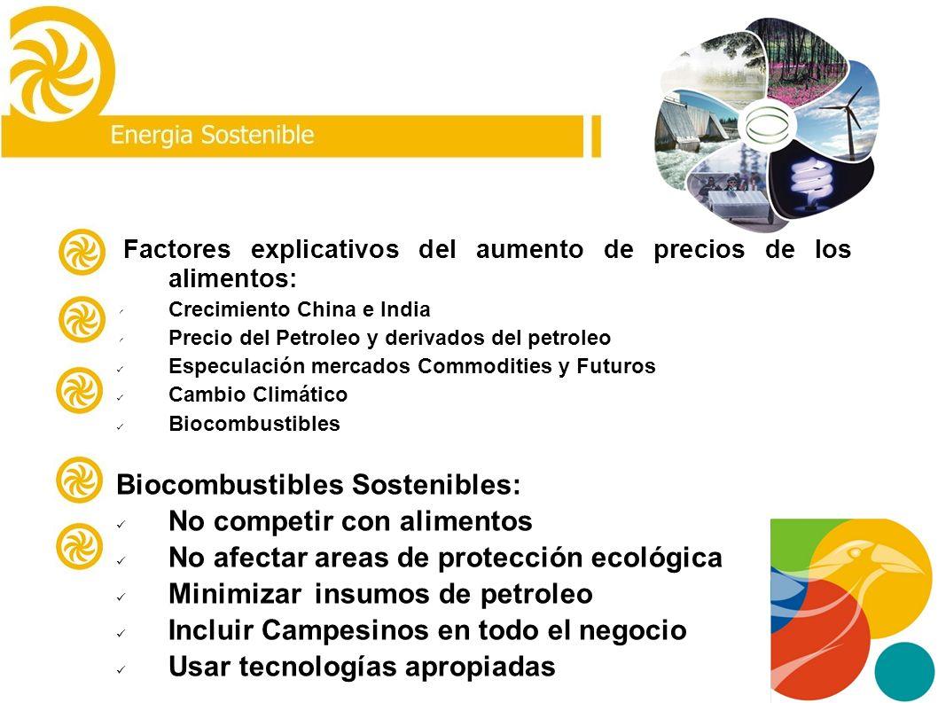 Biocombustibles Sostenibles: No competir con alimentos