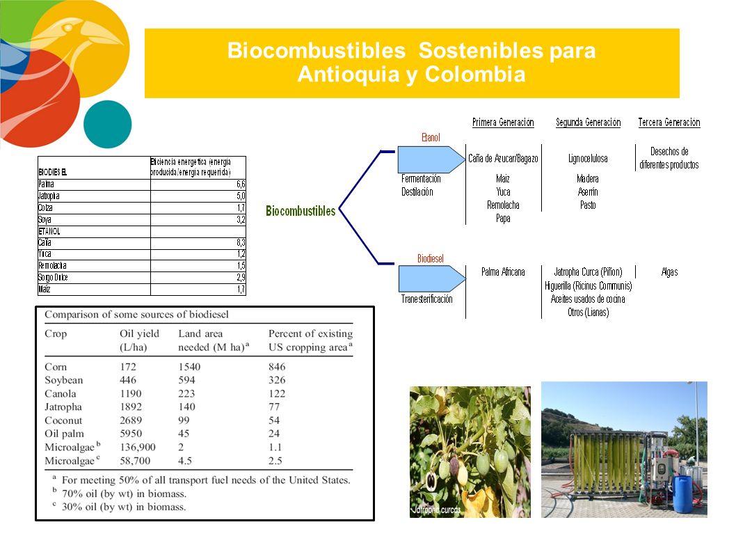 Biocombustibles Sostenibles para