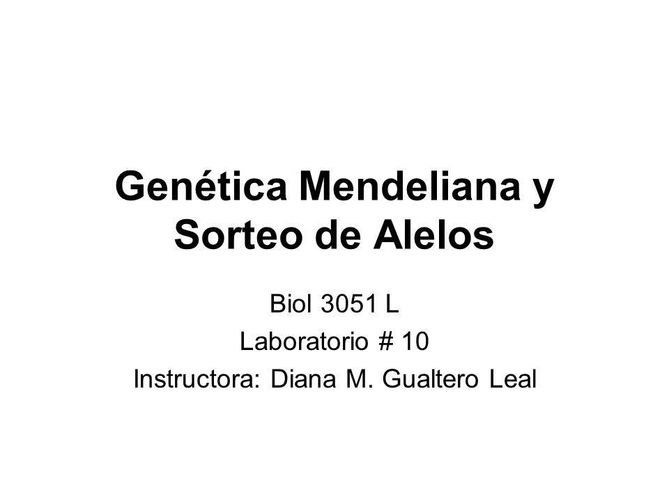 Genética Mendeliana y Sorteo de Alelos