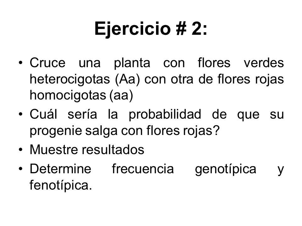 Ejercicio # 2: Cruce una planta con flores verdes heterocigotas (Aa) con otra de flores rojas homocigotas (aa)
