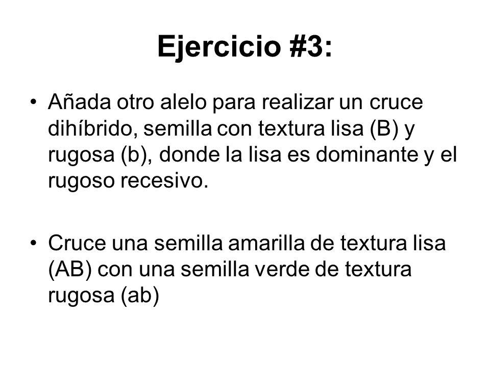 Ejercicio #3: