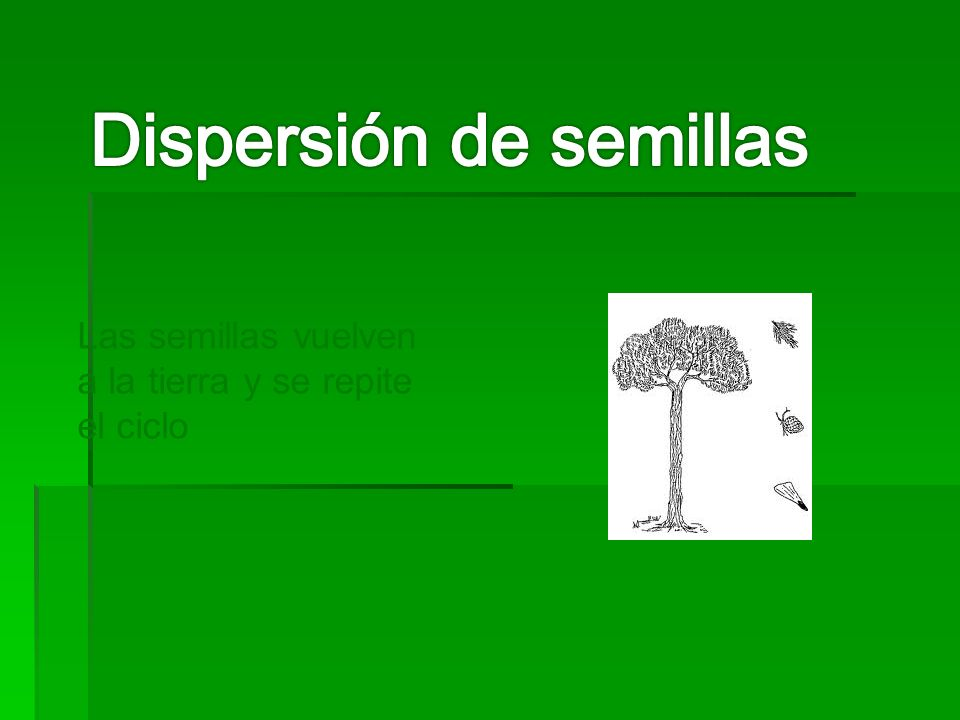Dispersión de semillas