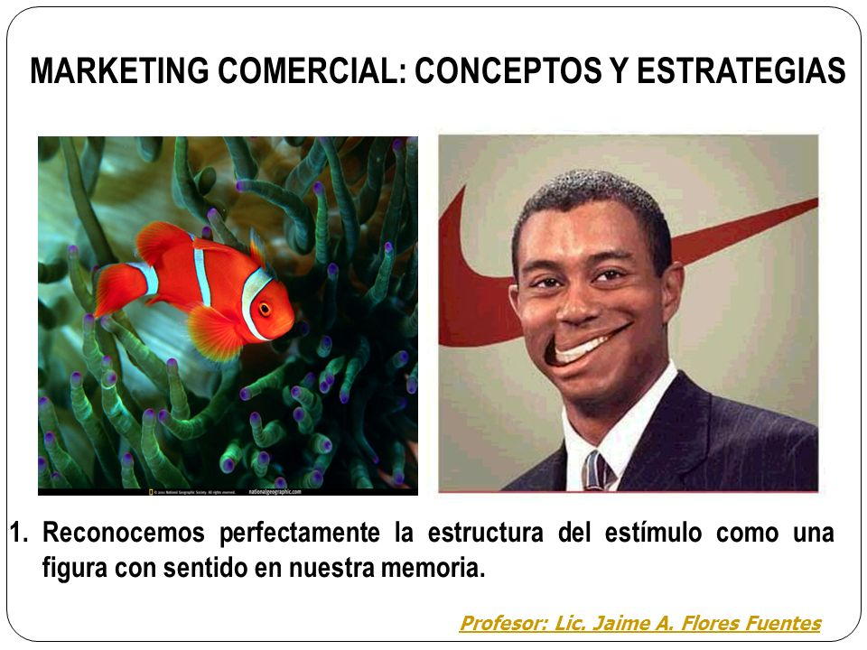 MARKETING COMERCIAL: CONCEPTOS Y ESTRATEGIAS
